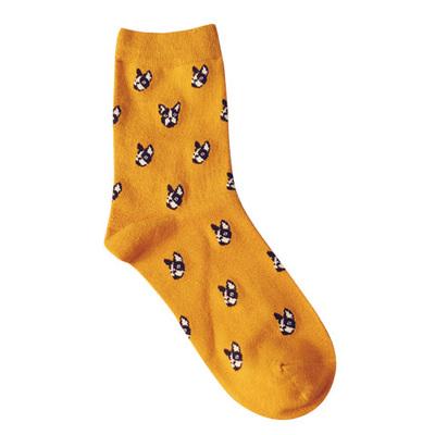 Носки Caramella высокие с изображением собаки породы Чихуахуа